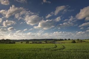 Agrarlandschaft Am Poggensee