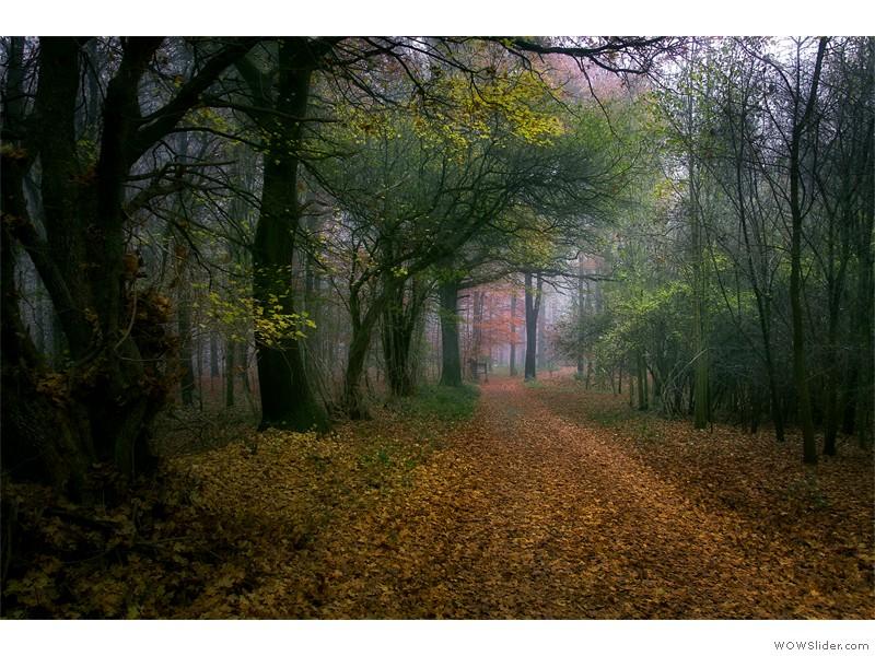 Kneeden-Herbst_2